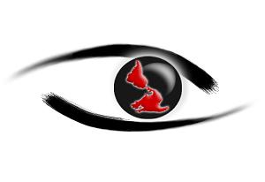 Logo InfoAmericas Patricio Zamorano fondo blanco300x206